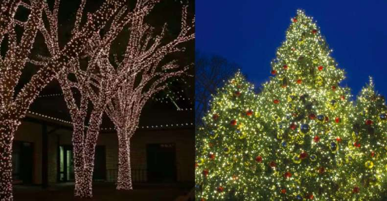 holiday-lighting-installation-lehi-utah-mobile